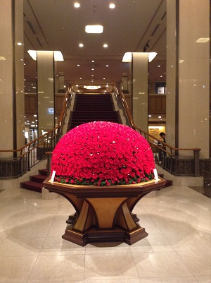 赤バラ.JPG